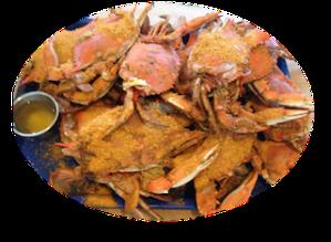 crabs circle