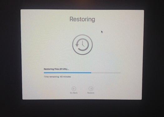the big restore