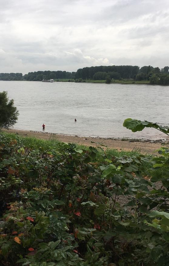 eight in the morning rhein river