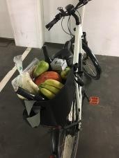 e-bike stuff and pug 2